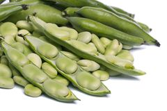 Broad beans. Close up view of some broad beans isolated on a white background royalty free stock photography