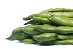Broad beans. Close up view of some broad beans isolated on a white background stock photography