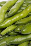 Broad beans. Close up view of some broad beans isolated on a white background stock photos