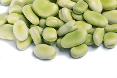 Broad beans. Close up view of some broad beans isolated on a white background royalty free stock image