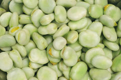 Broad beans. Closeup to fresh green broad beans Royalty Free Stock Image