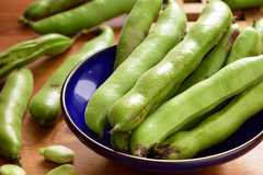 Broad beans fava beans in bowl. Royalty Free Stock Photography