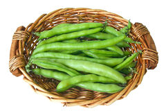 Broad beans, horse beans,fava beans Royalty Free Stock Image