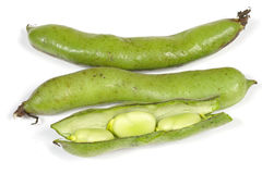 Broad beans isolated Royalty Free Stock Photography