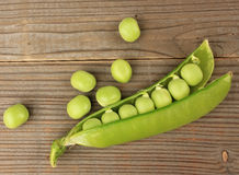 Broad beans of peas Stock Image
