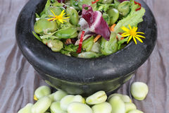 Broad beans salad. Royalty Free Stock Photos