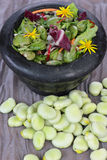 Broad beans salad. Royalty Free Stock Images