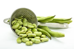 Broad beans. Some raw broad beans on white background royalty free stock photos