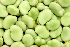 Broad beans Royalty Free Stock Photography