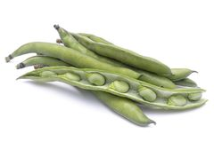 Free Broad Beans Vicia Faba Var. Major In Pods And Seeds Royalty Free Stock Photography - 107078377