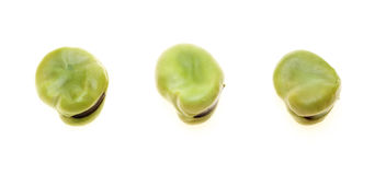 Broad beans in a white background Royalty Free Stock Images