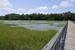 Broad Creek, Hilton Head Stock Photography