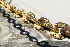 Strong chain. Rusty metal chain with torus shape links Royalty Free Stock Photos