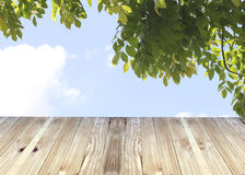 Broad planks and blue sky of leaves background. Stock Photography