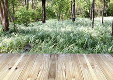 Broad planks and tree in garden of background. Stock Photo