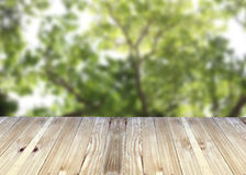 Broad planks and tree in garden of blur background. Stock Image
