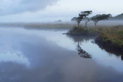 Broad Pool in the Mist Royalty Free Stock Photography