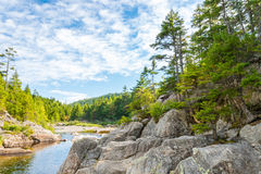 Broad River Along Moose Horn Trail Stock Image