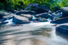 Broad river   Royalty Free Stock Image