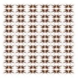 Broadbarred firefish, Pterois-antennata, in herhaald patroon royalty-vrije stock afbeelding