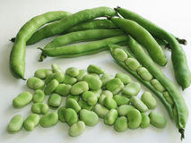 Broadbeans In Pods Royalty Free Stock Photos