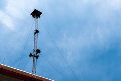 Broadcasting and loudspeaker tower megaphone for announcing in community royalty free stock photo