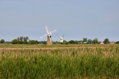 broads windpumps Obraz Stock