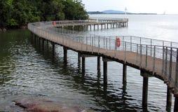 Broadwalk litoral em Chek Jawa Imagem de Stock Royalty Free