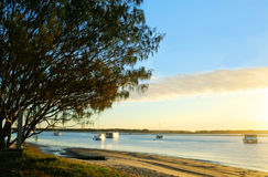 Broadwater Gold Coast Royalty Free Stock Photography