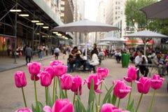 Broadway y 34ta calle en NYC Imágenes de archivo libres de regalías