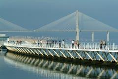 broar Fotografering för Bildbyråer