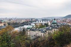 Broar av Prague, Tjeckien Royaltyfria Foton