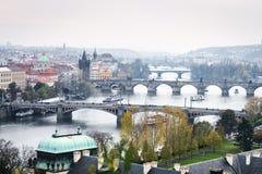 Broar av Prague, Tjeckien Royaltyfri Bild