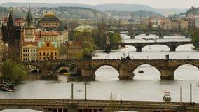 Broar av Prague, Tjeckien Arkivbilder