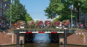 Broar i Amsterdam Royaltyfri Foto