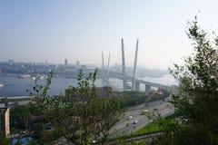 Broar Vladivostok primorsky snowstorm för krai Ryssland Royaltyfri Bild