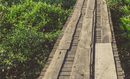 Broardwalk de madeira imagens de stock