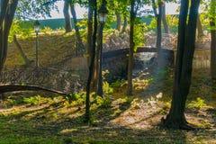 Broarna i parkera med figurerade falska staket och strålarna av solen som gör träden till och med lövverket, skapar a Arkivfoton