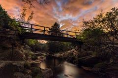 Broarna royaltyfri fotografi