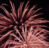 Brocade Fireworks during Nighttime in Time Laps Photography Royalty Free Stock Photography