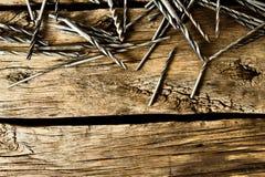 Brocas em um fundo de madeira fotos de stock royalty free