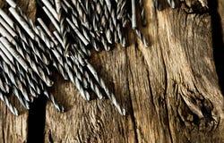 Brocas em um fundo de madeira fotos de stock
