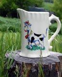 Brocca di latte fresca del ` s dell'agricoltore Fotografie Stock
