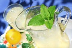 Brocca di limonata con uno sprig della menta Immagini Stock Libere da Diritti
