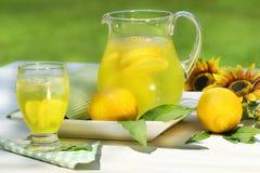 Brocca di limonata fredda Fotografie Stock Libere da Diritti