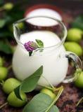Brocca di vetro del latte con il trifoglio rosa Immagine Stock