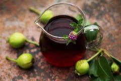Brocca di vetro del tè con le pere ed il trifoglio rosa Fotografia Stock