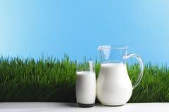 Brocca e vetro di latte sul campo di erba Immagine Stock