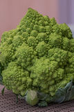 Broccoflower Lizenzfreie Stockbilder