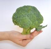 Broccoli. Broccoli head  on the pal Stock Photography